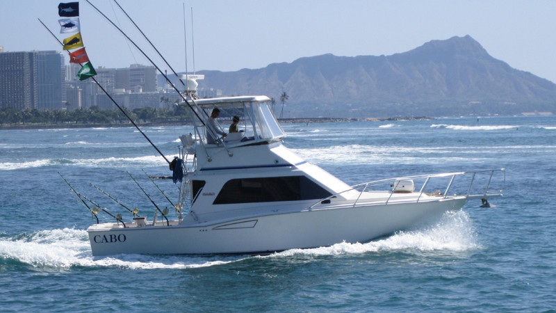 Hawaii marlin fishing oahu charter boats for Honolulu fishing charters