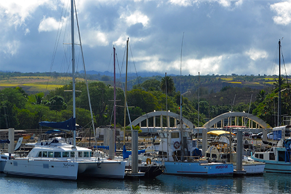 Hawaii marlin fishing port and harbor information for Fishing stores oahu