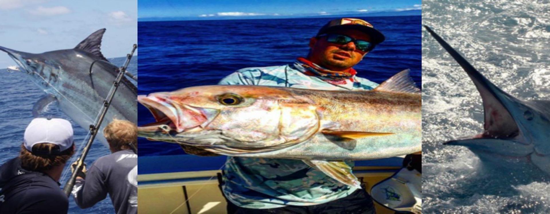 Freshwater fish kauai - Kauai Fleet