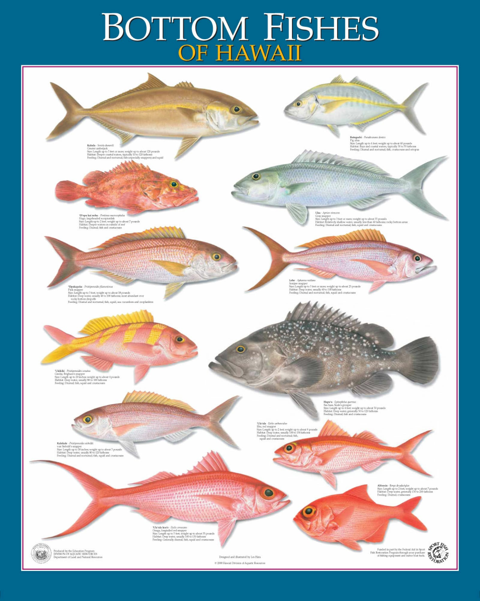 Freshwater fish of hawaii - Freshwater Fish Of Hawaii